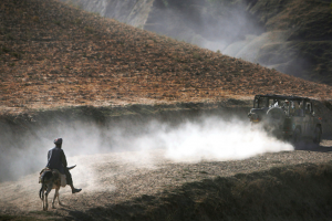 Anja Niedringhaus_AP_AfganiManonHorse