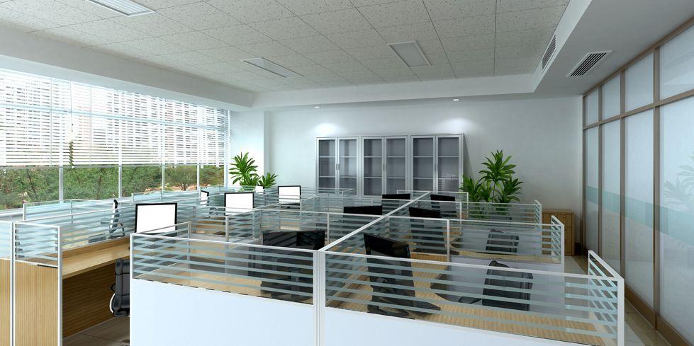 office cubicle dcor sharpheels - Office Cubicle Decor