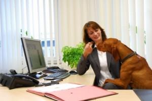 Office Petiquette
